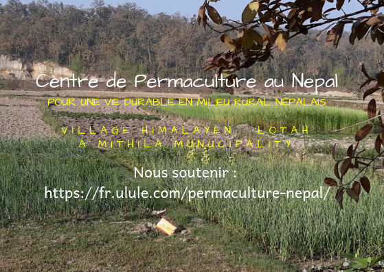 image finale permaculture fr